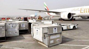 Виды авиационных контейнеров